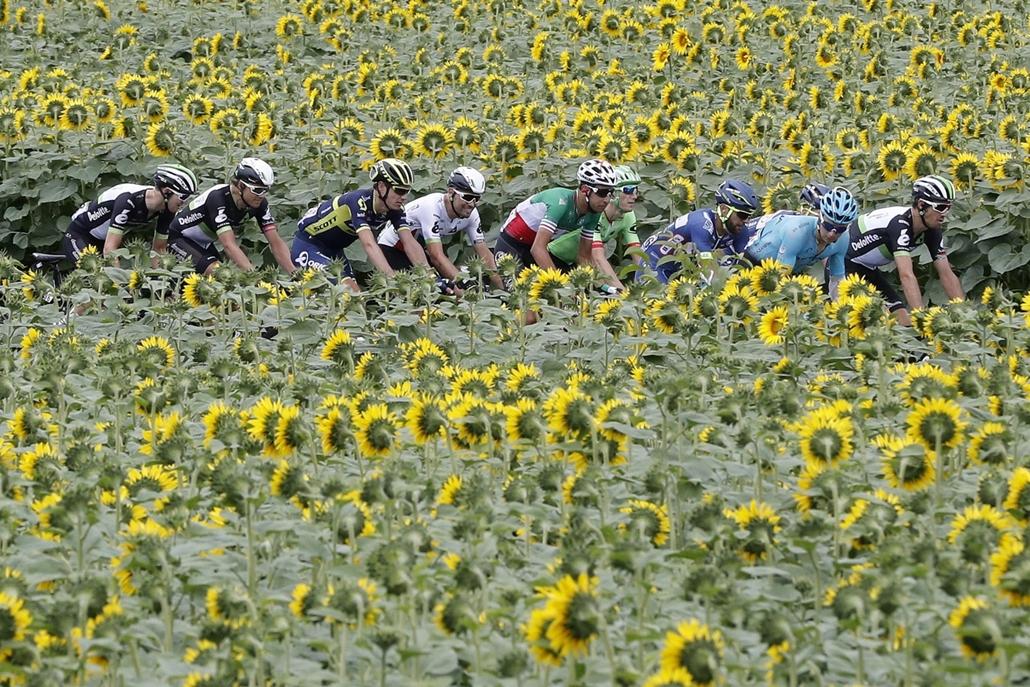 epa.17.07.11. - Versenyzők a tizedik, 178 kilométeres szakaszon Perigueux és Bergerac között július 11-én. - Tour de France 2017