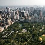 Tilos rágyújtani a New York-i parkokban