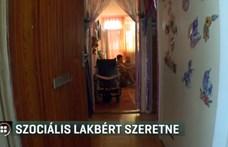Hiába kérte a fogyatékos fiát egyedül gondozó nő, hogy kevesebb lakbért fizethessen