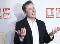Berlinben építi meg első európai Tesla-gyárát Elon Musk