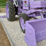 A nap fotói: régi lila traktor a levendulásban