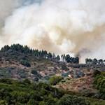 Négyezer embert kellett kitelepíteni Gran Canarián az erdőtűz miatt