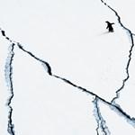 Az emberiség szégyene: már az Antarktiszon is mikroműanyagot és vegyszereket találtak