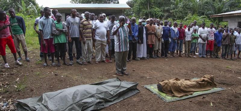 17 ebolás beteg egyszerűen megszökött