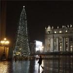 Így néz ki a Vatikán karácsonyfája - fotó