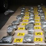 Negyedmilliárd forint értékű kábítószert foglalt le a rendőrség Budapesten