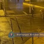 Földre vitték áldozataikat, két helyen is lecsaptak pofátlan rablók Budapesten – videó