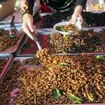 A bogaras tészta a legújabb őrület Japánban