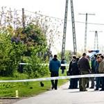 Romagyilkosságok: távcsöves puskával végezték ki a tiszalöki áldozatot