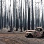 Fotó: fekete erdőt hagyott maga után a Ponderosa lángtengere Kalifornában