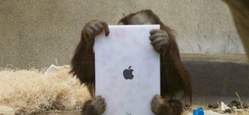 Most érdemes eladnia használt iPadjét