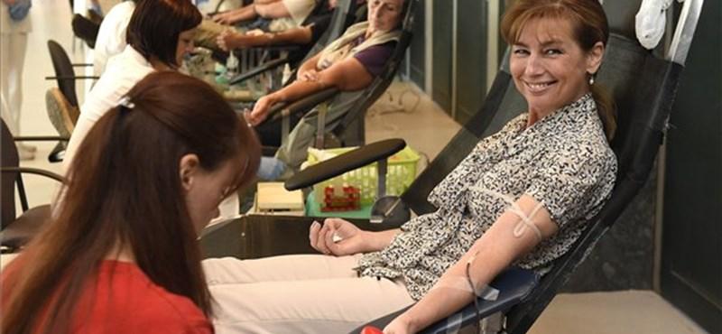Sok vért gyűjtött a Magyar Vöröskereszt