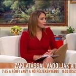 """A Tv2 műsorvezetője szerint """"kis légyott"""" a lehúzott slicces zaklatás"""