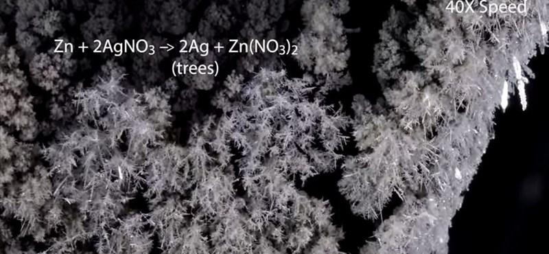 Így kellene tanítani a kémiát az iskolákban