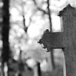 Rendhagyó tanórák a temetőben