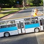 Ez a kisfiú imádja a buszokat, sajátot készített neki a magyar apuka – videó