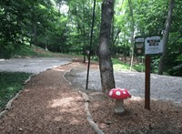 Fa dőlt egy iskolás csoportra egy vasi kalandparkban, egy gyerek meghalt
