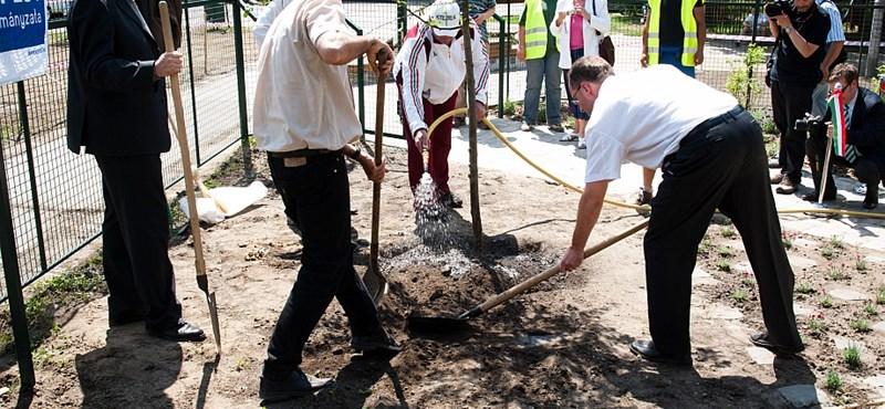 Ide bárki ültethet: megnyílt Budapest első közösségi kertje