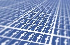 Kormányalkalmazottakhoz köthető oldalakat is bezárt Moldovában a Facebook