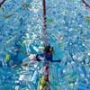 Bors: csak a 11. napon tesztelték a külföldről hazatért magyar úszókat