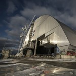 Sugárzásevő gombákat találtak a csernobili atomerőmű falain