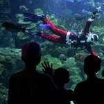 45 méter mély medence épül Lengyelországban
