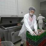 Kirúgások jönnek az ország egyik legnagyobb húsipari cégénél