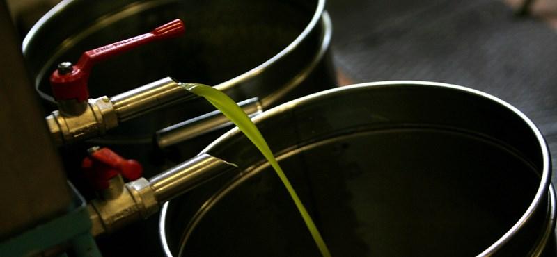 Importálnia kell Olaszországnak az olívaolajat a klímaváltozás miatt