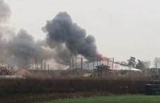 Hatalmas tűz miatt kellett kiüríteni a chesteri állatkertet - videó