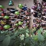 Több tízezer középiskolásra várnak nehéz napok - de előtte még elballagnak
