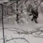 Pánik a síparadicsomban: furcsa foltos állattól rettegnek a síelők