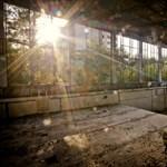 Csernobilt visszafoglalta a természet – Nagyítás-fotógaléria