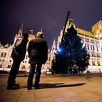 Fotók: Már áll az óriásfenyő a Kossuth téren