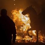 Bátor lovak és őrült lovasok Spanyolország legvagányabb hagyományában