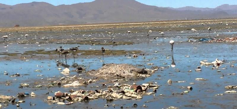 Kiszáradt az Uru-Uru, ökokatasztrófa felé sodródik Bolívia