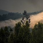 Súlyos erdőtűz pusztít a magyarok közt is népszerű Gran Canaria hegyeiben