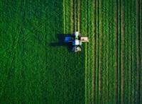 Bio és nagyüzemi termelés, avagy merre tart a hazai mezőgazdaság?