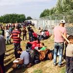 Lesújtó értékelést adtak a magyar tranzitzónákról az Európa Tanács szakértői