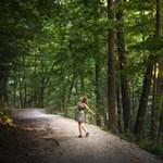 Egyre népszerűbb az erdőfürdő