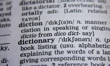 Őszi érettségi: lehet szótárat használni az idegen nyelvi vizsgán?
