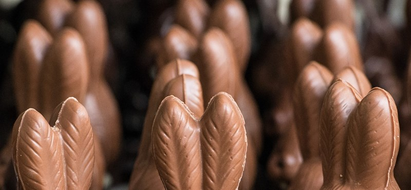 Óriásira nőtt a csokinyuszi karbonlábnyoma