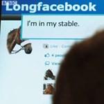 Horse iPad: az iPad előnyei lovaknak [videó]
