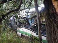 Elloptak és totálkárosra törtek egy Volánbuszt Fejér megyében
