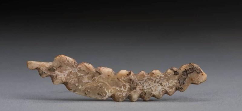 5000 éves selyemhernyó-faragványt találtak Kínában