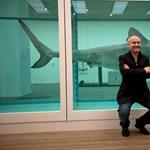 A férfi, aki nem tud mit kezdeni a pénzével - Damien Hirst