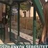 Rárobbant egy üvegtábla a buszmegállóban, a sofőr rá se hederített