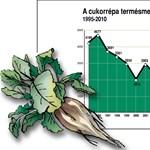 VG: brazil nádcukorral enyhítik a magyar cukorhiányt