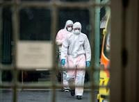 Tízezer felett a belga fertőzöttek száma
