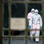 Négy újabb halálos áldozata van a járványnak Magyarországon