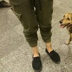 Íme Husi, a szabotőr, aki miatt ma leállt a 3-as metró – fotó